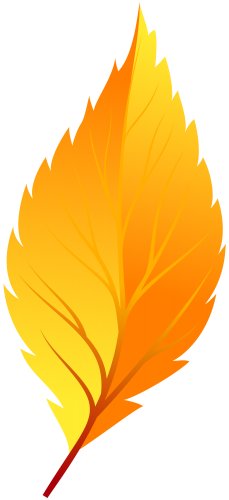 229x500 Yellow Autumn Leaf Png Clip Art Clip Art Clip Art
