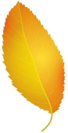 236x462 Yellow Leaf Png Clip Art Fall Clip Art And Leaves