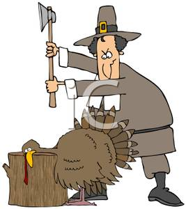 267x300 A Pilgrim Man Ready To Butcher A Thanksgiving Turkey Clipart Image