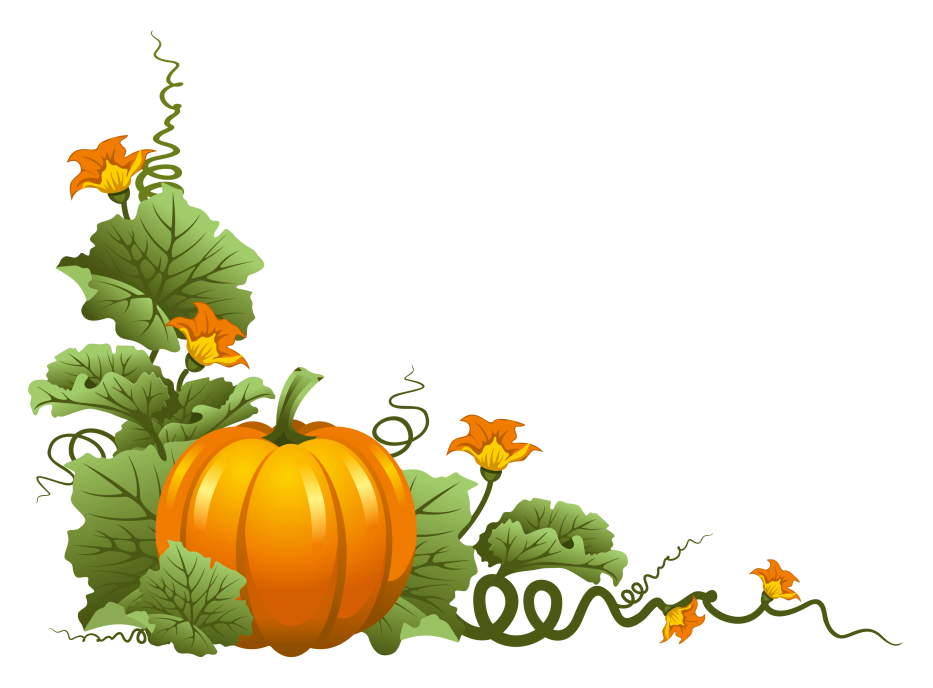933x688 Turning Plain Pumpkins Into Elegant For Thanksgiving Cream White