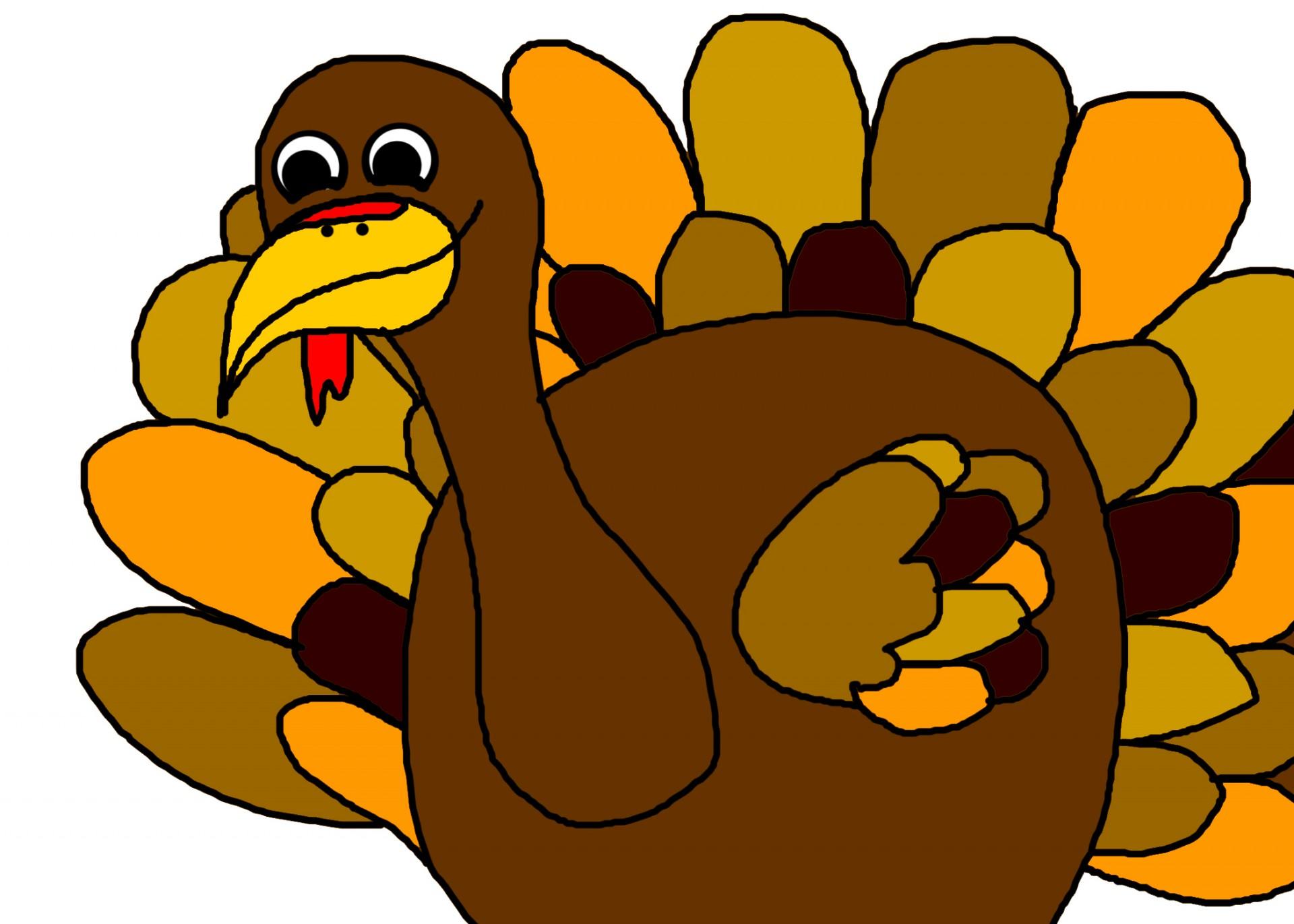 1920x1371 Thanksgiving Turkey Photos