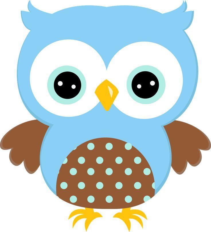 736x808 1343 Best Owls