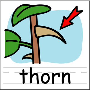 304x304 Clip Art Basic Words Thorn Color Labeled I Abcteach