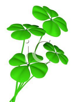 257x350 3 Leaf Clover Clipart