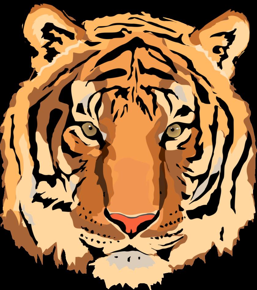 840x950 13 Tiger Vector Art Images