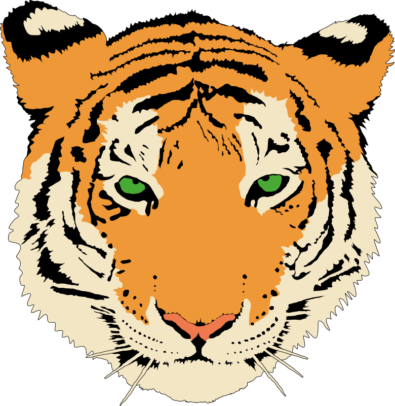 780x800 Tiger Animal Clipart Pictures Royalty Free Clipart Pictures Org