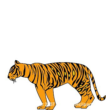 338x350 Tiger Clip Art Download This Free Clipart Images