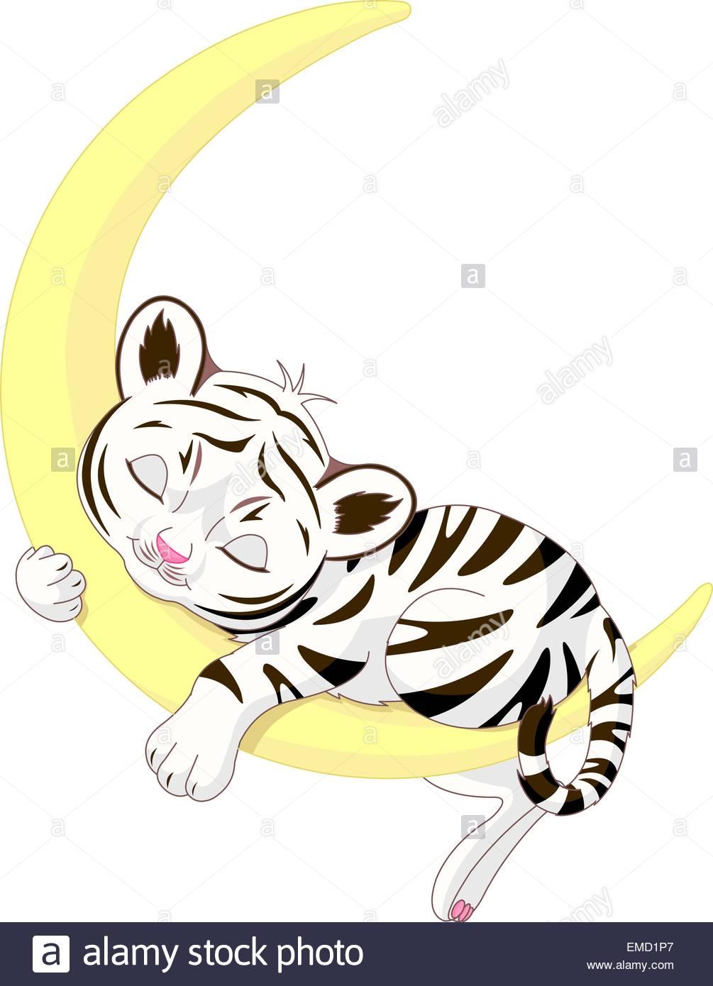 1005x1390 Tiger Cub Stock Vector Images