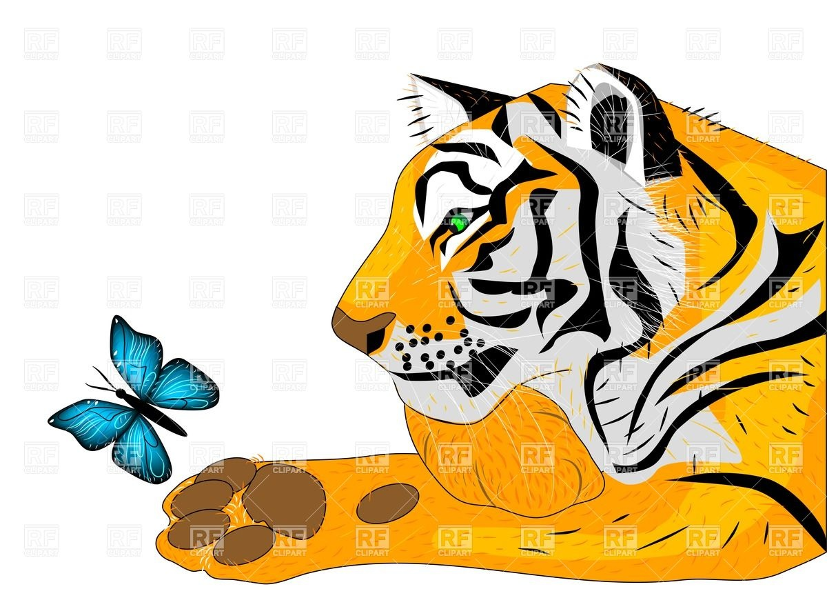 1200x854 Tiger And Butterfly Royalty Free Vector Clip Art Image