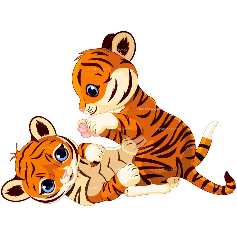 800x800 Tigres Clipart Animated'94019