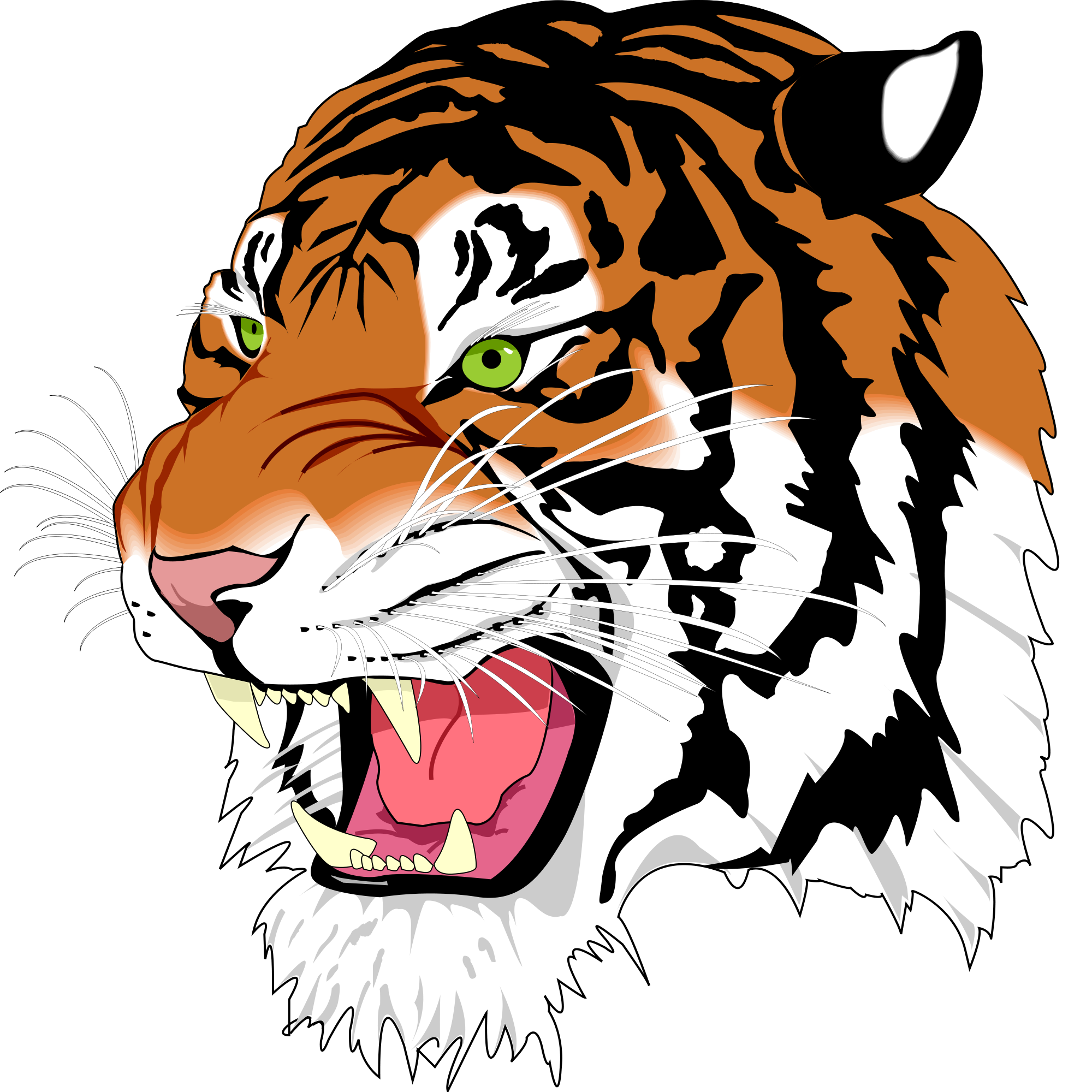 2000x2000 Tiger Clipart Images And Cartoon Pictures