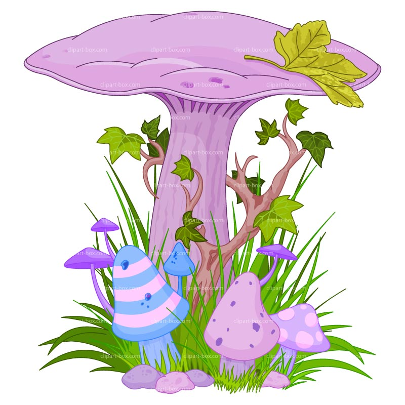 800x800 Collection Of Fairy Clipart High Quality, Free