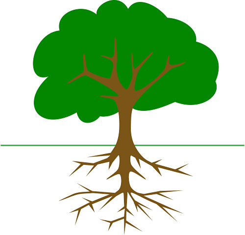 500x479 Clip Art Tree With Tire Clipart