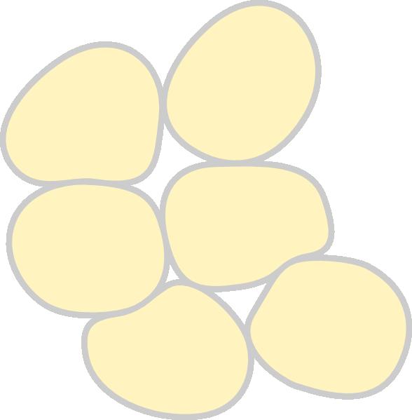 588x599 Adipose Tissue Clip Art