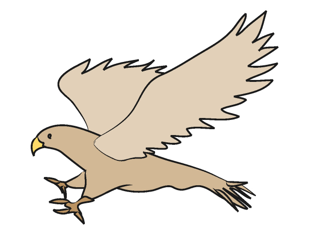 640x480 Collection Of Hawk Clipart Images High Quality, Free