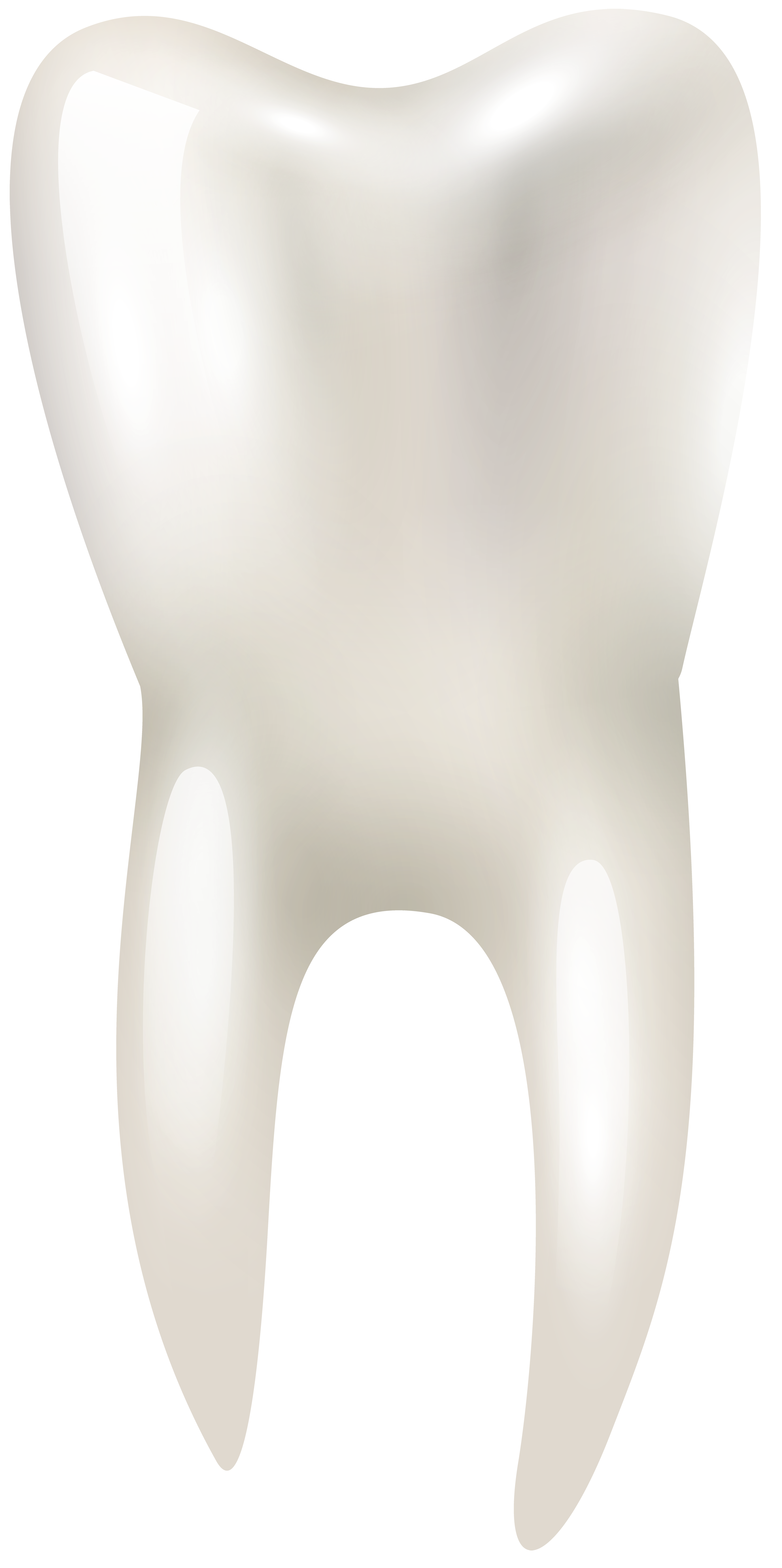 3490x7000 Tooth Png Clip Art