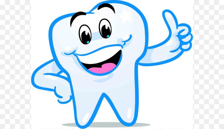 768x444 Teeth Clipart Png Tooth Fairy Smile Human Tooth Clip Art Dental