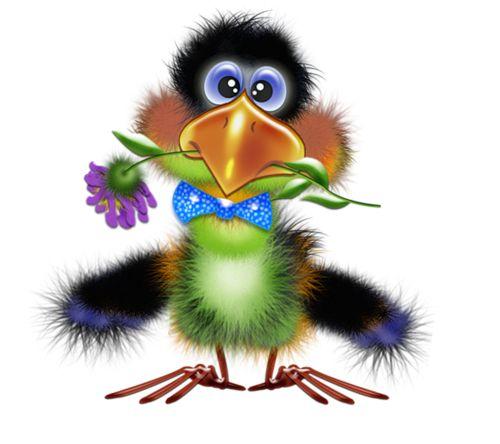 500x444 29 Best Birds Images On Clip Art, Bird Clipart