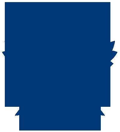 400x440 Toronto Maple Leafs Logo