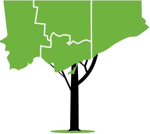 494x441 Detox Toronto Toronto Environmental Alliance