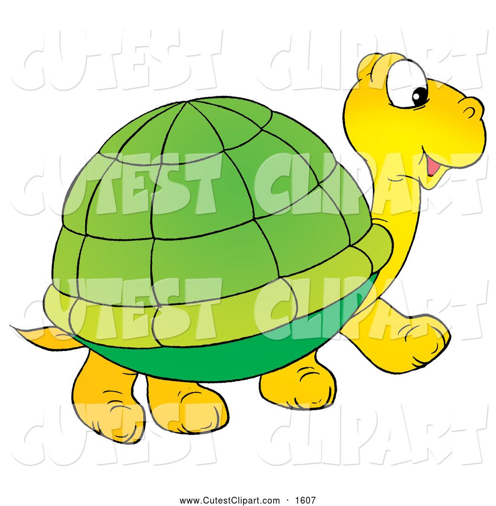 1024x1044 Tortoise Clipart Clipart Panda