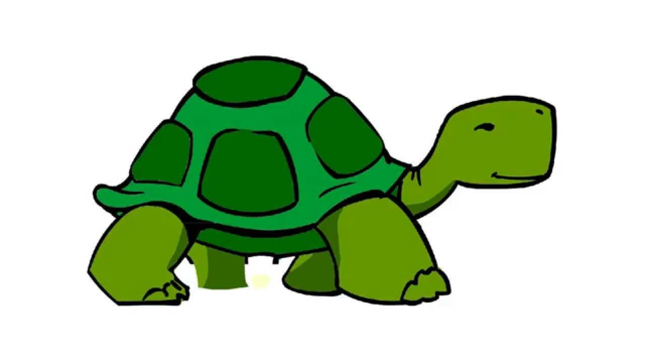 1280x720 Tortoise Clipart Walking Free Collection Download And Share