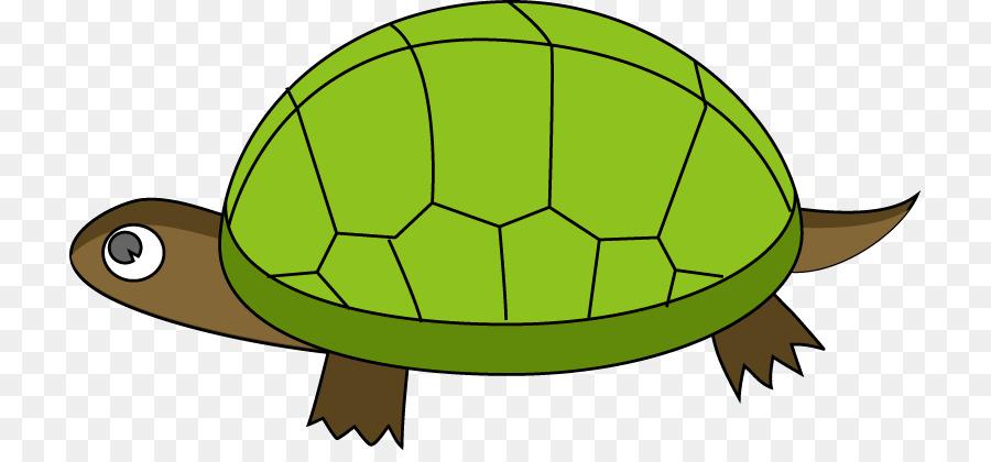 900x420 Turtle Reptile Tortoise Clip Art