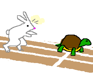 300x250 Race Between The Tortoise And The Hare