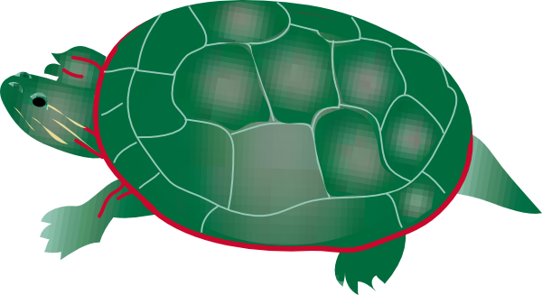 600x327 Painted Turtle Clip Art