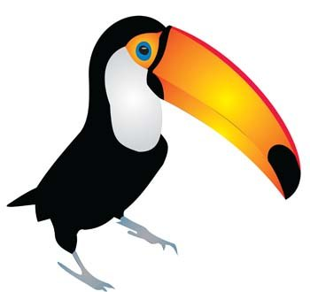 350x330 Free Toucan Clipart And Vector Graphics