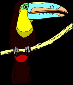 258x299 Perched Toucan Clip Art