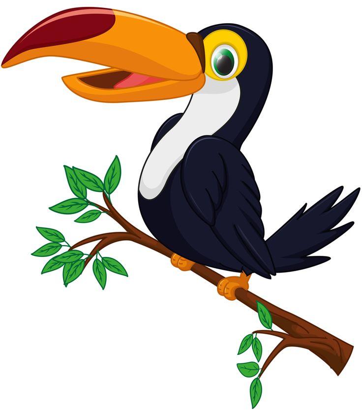 736x835 723 Best Clipart Birds Images On Clip Art