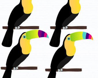 340x270 Toucan Clipart Etsy