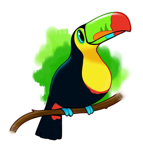 500x527 Toucan Draws Tumblr