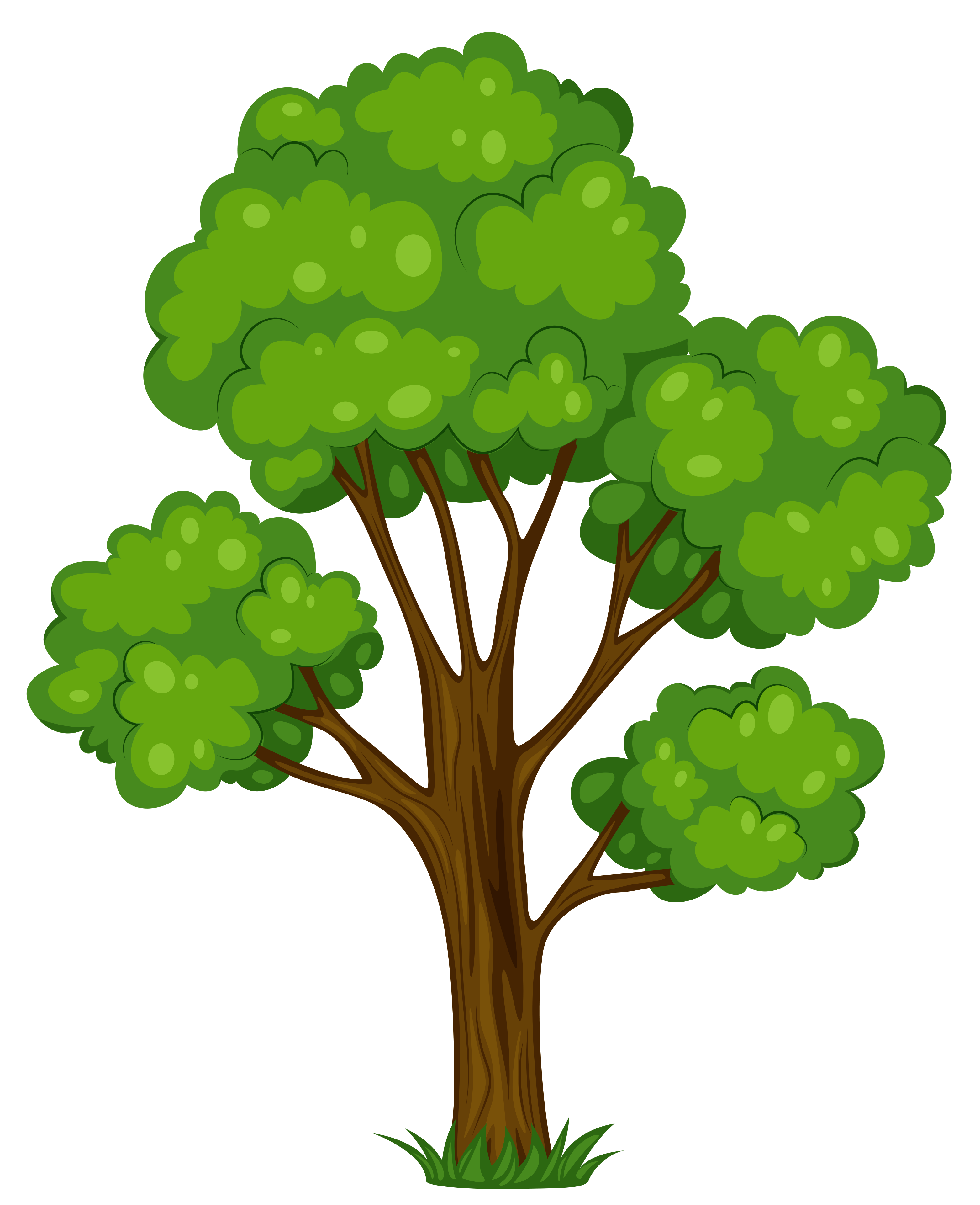 3126x3842 Tree Clip Art