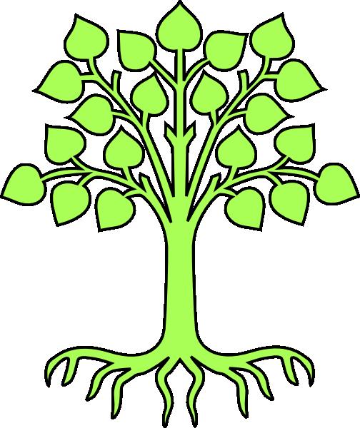 504x600 Blank Family Tree Clip Art Clipart Clipart