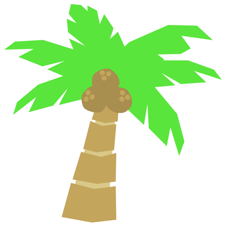 791x800 Collection Of Coconut Tree Clipart Png High Quality, Free