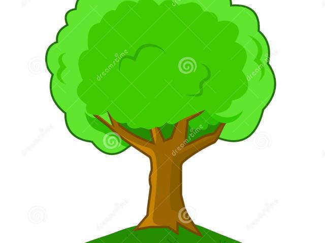 640x480 Quick Cartoon Pictures Of A Tree Cliparts Free Download Clip Art
