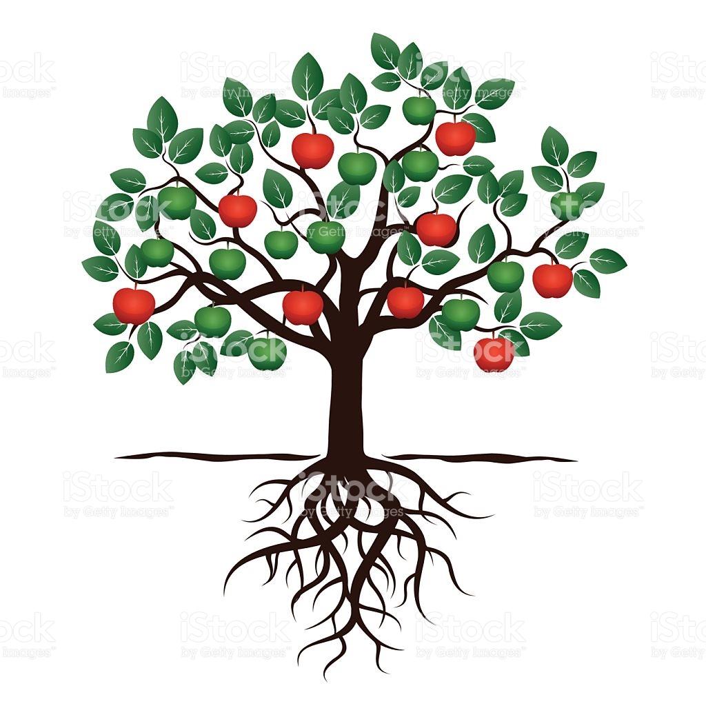 1024x1024 Drawn Roots Fruit Tree 3424589