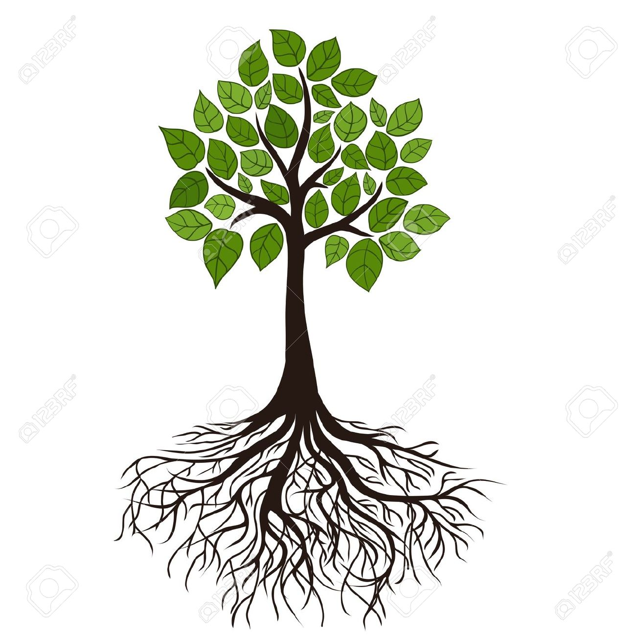 1300x1300 Free Clipart Of Tree With Roots Clip Art Panda Images