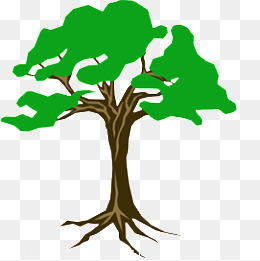 260x261 Roots Tree Png, Vectors, Psd, And Clipart For Free Download Pngtree