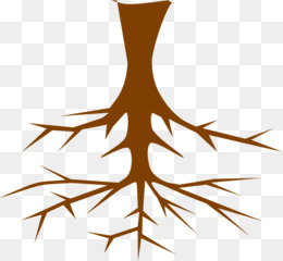 260x240 Tree Of Life Root Clip Art