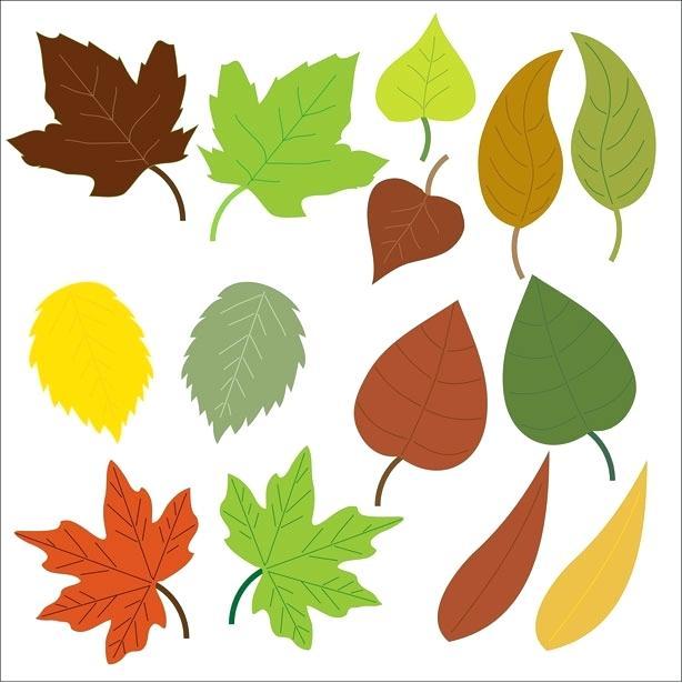 614x615 Fall Foliage Clip Art Fall Leaves Clip Art Black And White 5