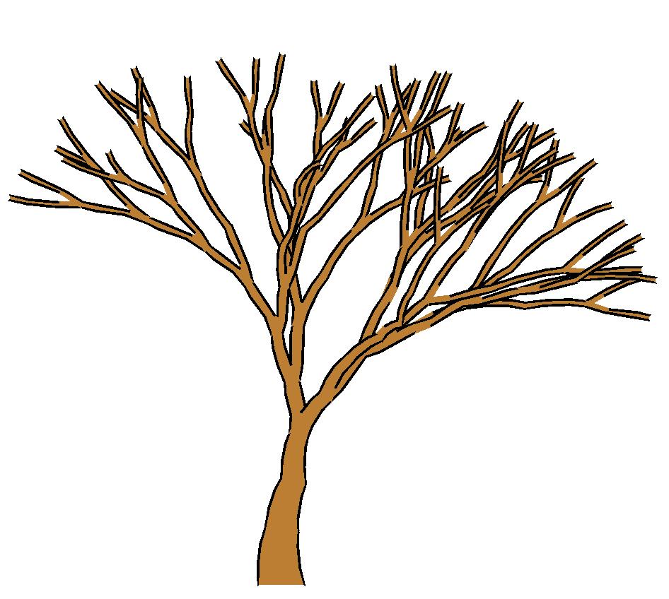 946x848 Clip Art Tree No Leaves Clipart Panda