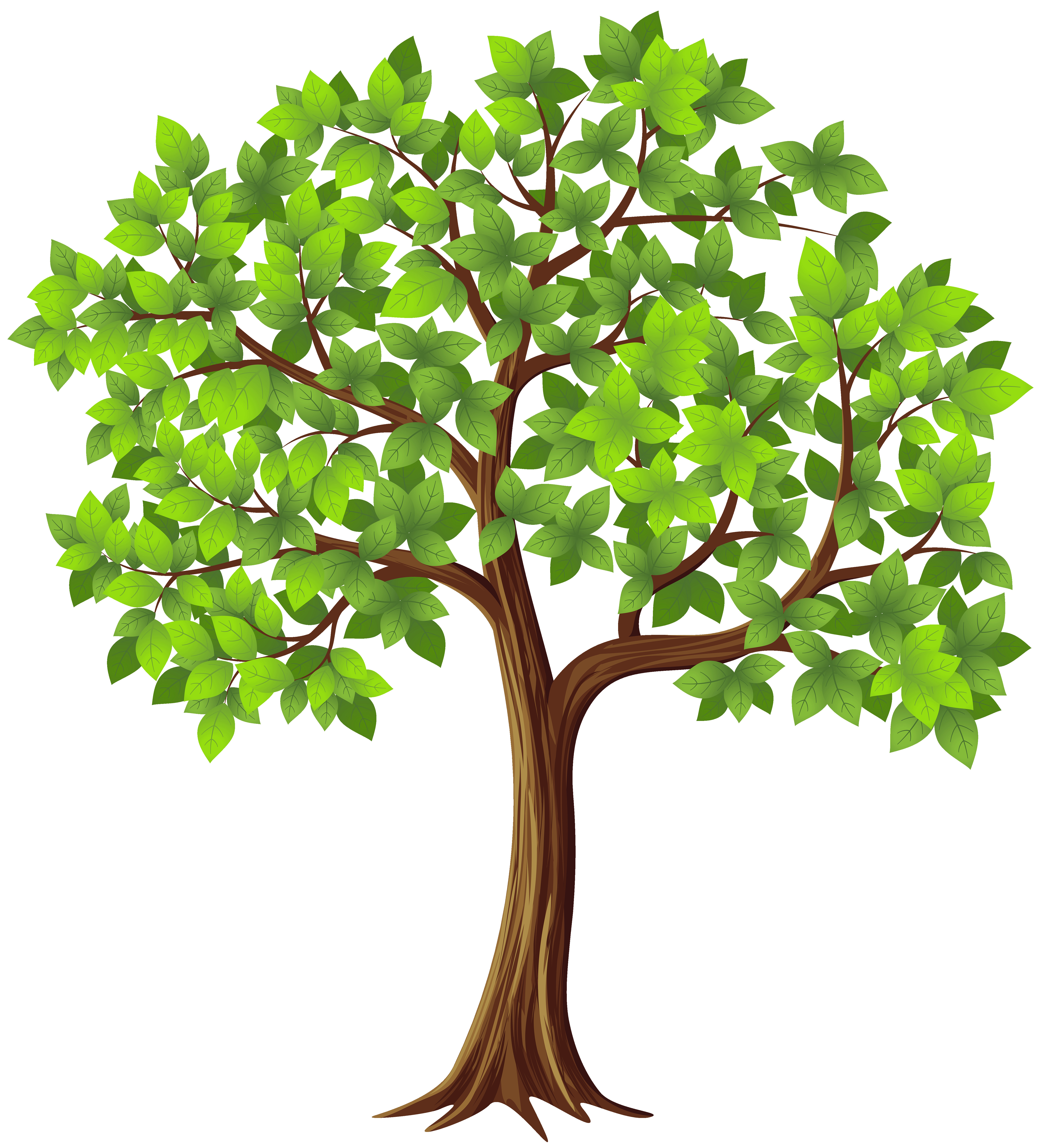 tree of life clipart at getdrawings com free for personal use tree rh getdrawings com tree of life clipart black and white tree of life clipart images