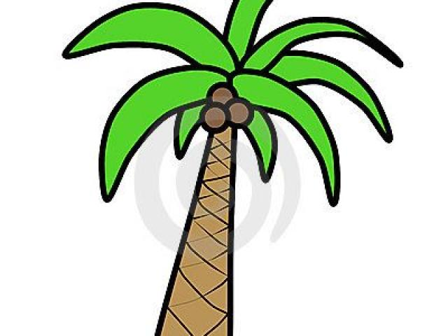 640x480 Palm Tree Silhouette Png Free Download Clip Art