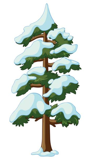 348x612 Snow Covered Trees Clipart