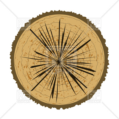 400x400 Tree Rings And Saw Cut Tree Trunk Royalty Free Vector Clip Art