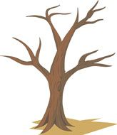 164x190 Drawings Of Trees Without Leaves Free Trees Clipart