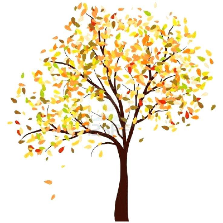 736x736 Leaves Images Clip Art Twelve Grunge Leaves Twelve Grunge Fall